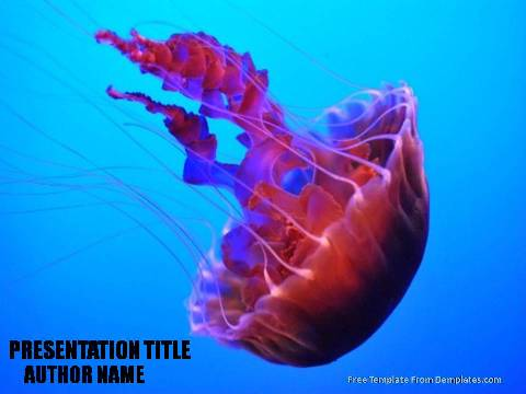 Underwater powerpoint templates archives demplates sample powerpoint template490 toneelgroepblik Choice Image