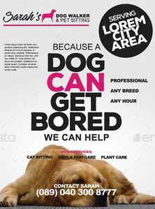 Lost Dog Flyer Template-17