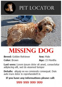 lost dog flyer template-5