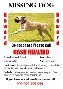 Lost Dog Flyer Template-7