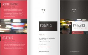 Tri fold company brochure template