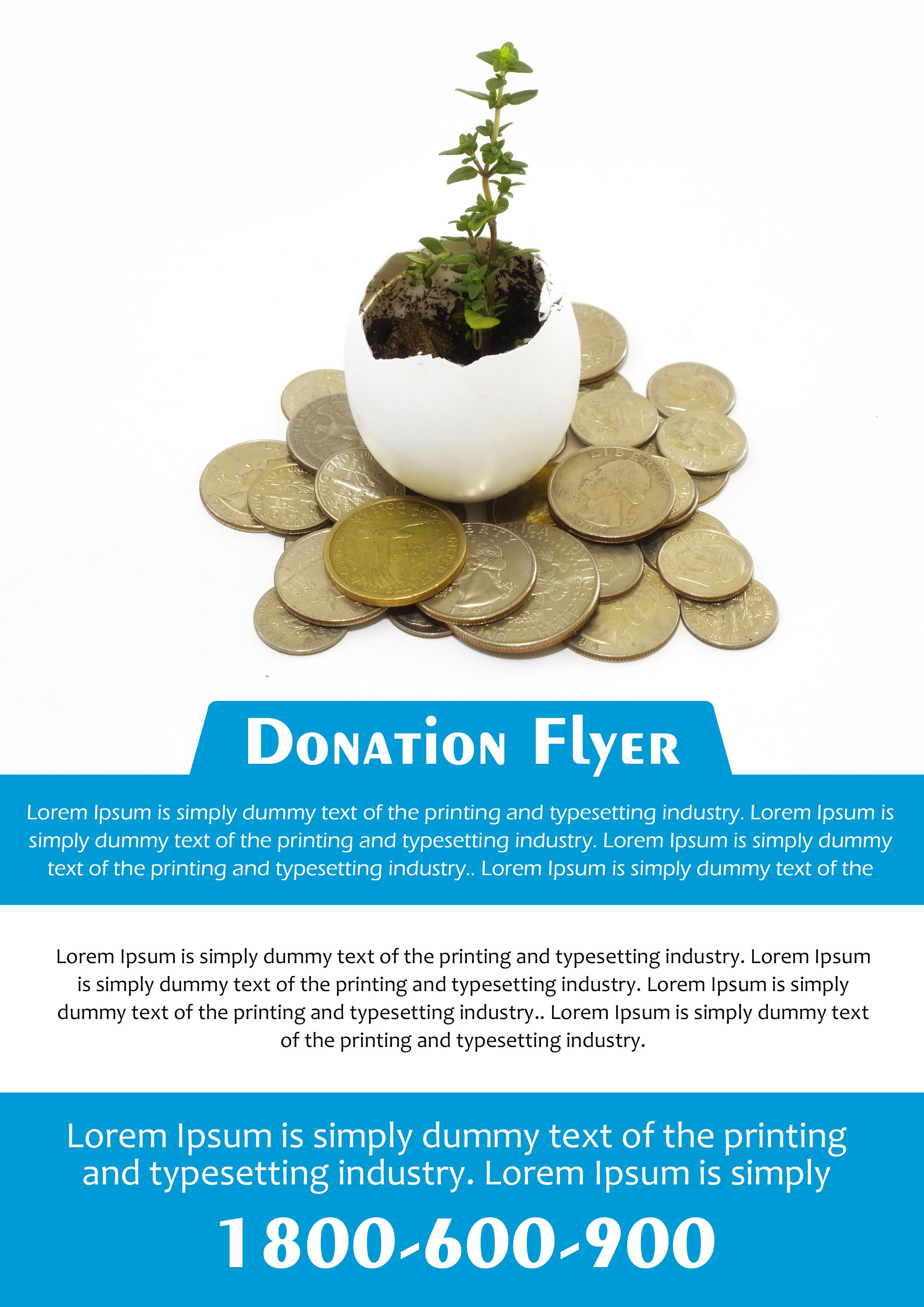 donation flyer samples