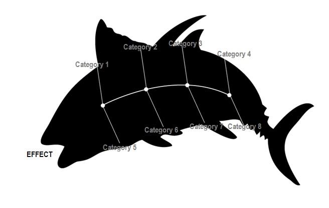 fishbone diagram template 6