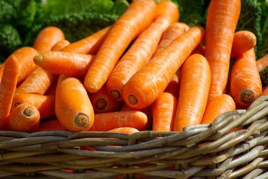 Carrots - Things that are red