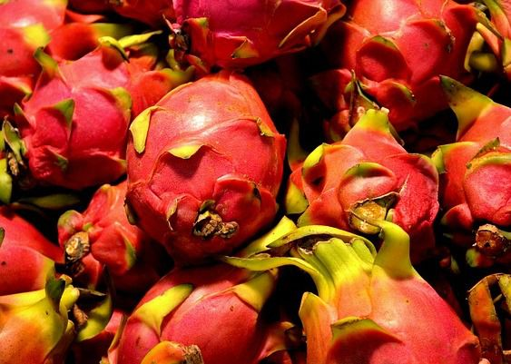 dragon fruit - things that are red