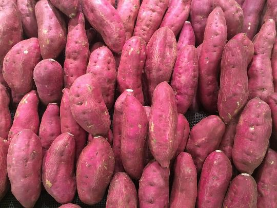 sweet potato - things that are red
