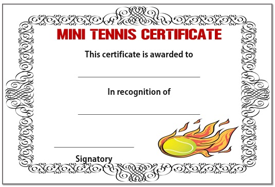 Mini tennis certificate 2