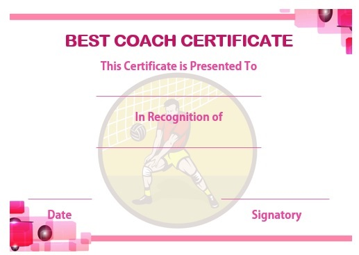 Volleyball coaching certificate