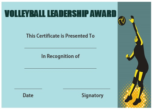 Volleyball leadership certificate