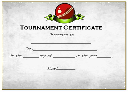 Certificate For Cricket Tournament