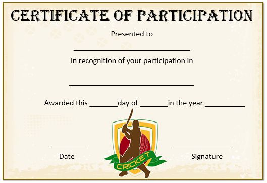 22 well designed cricket certificate templates free word templates 22 well designed cricket certificate templates free word templates demplates yelopaper Choice Image