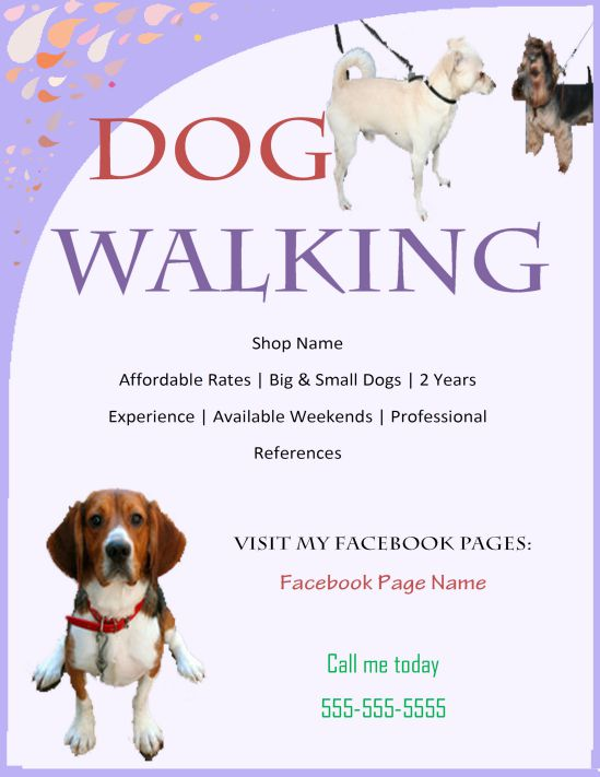 How To Make A Good Dog Walking Flyer