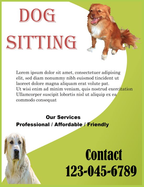 Professional dog sitting flyer