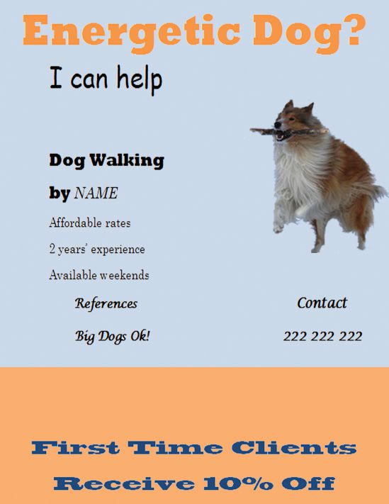 Professional dog walking flyer template