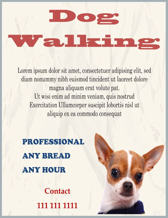 25 dog walking flyers for small dog sitting businesses attractive professional dog walking flyer colourmoves