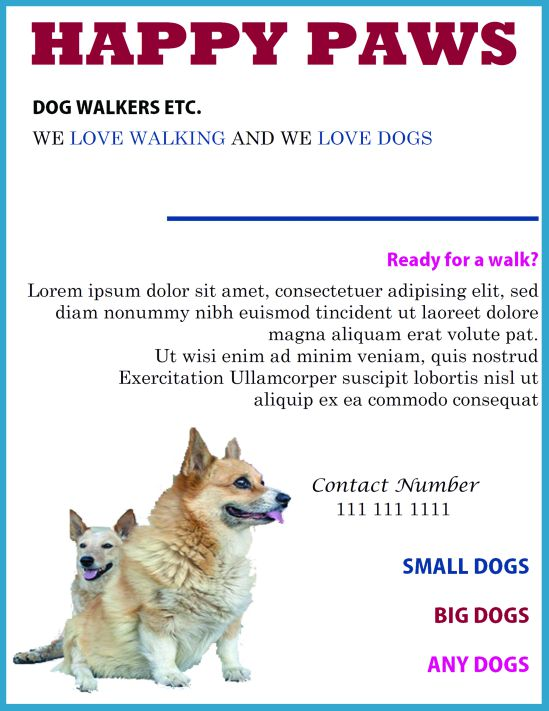 Walking and sitting for dogs flyer