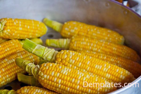 Corn - Things that are yellow