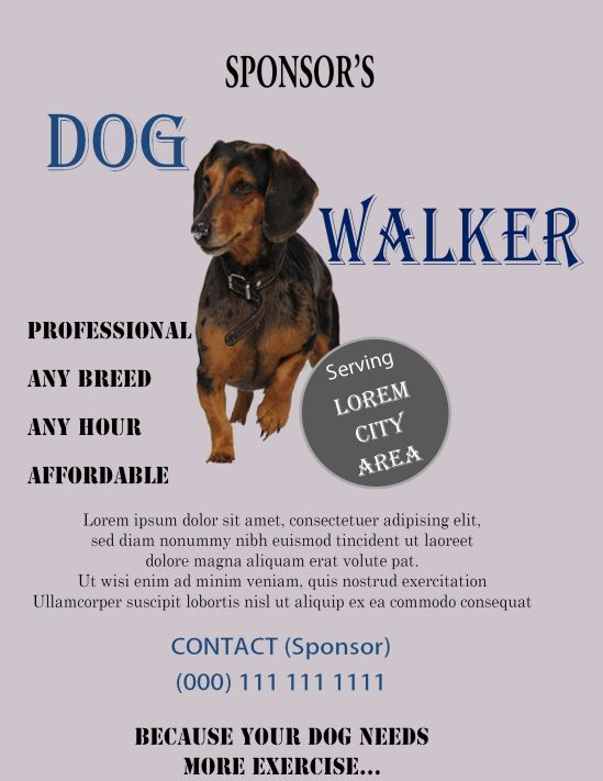 Dog walking flyer