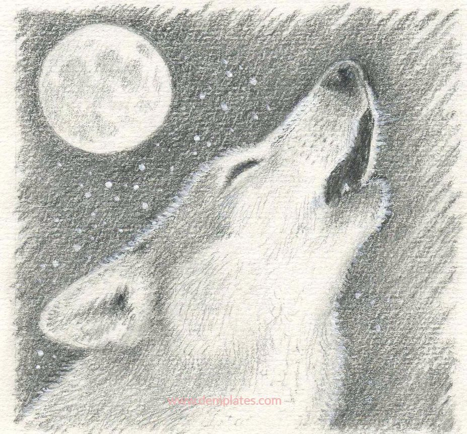 Drawing of wolves howling at the moon - 7