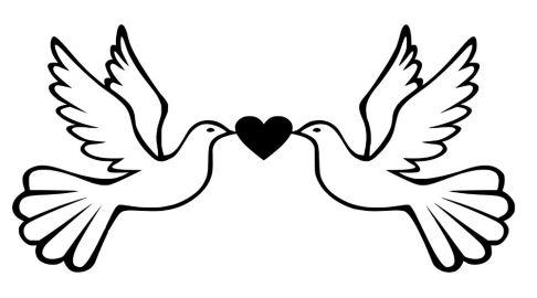 Love Birds Drawing Easy