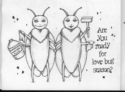 Love Bug Drawing