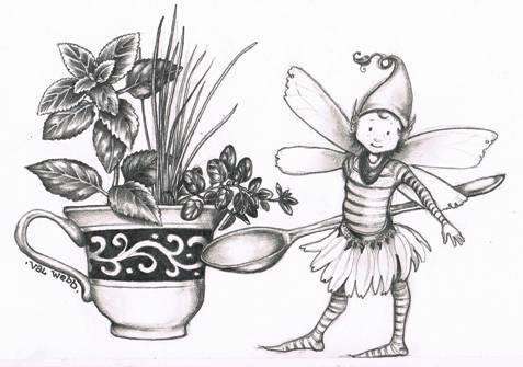 Love Drawing Herbs