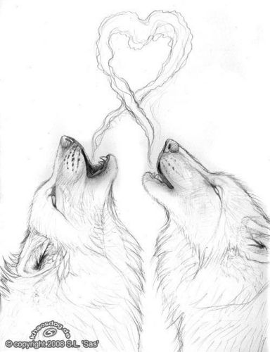 Love Wolves Drawing
