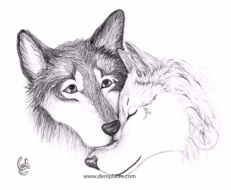 Wolf Love Drawing - 4_1
