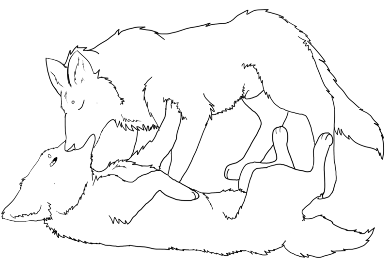 Wolf Love Drawing - 4