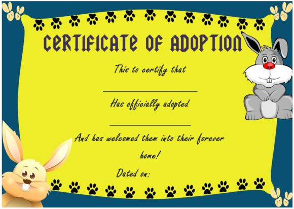 Toy Adoption Certificate Template 13 Free Word Trending News Today