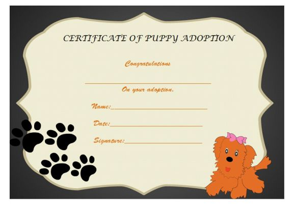 Paw patrol puppy adoption certificate