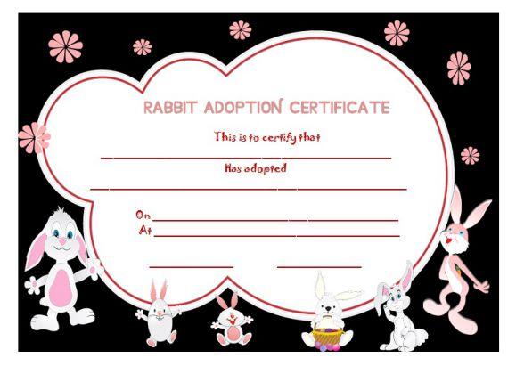 Rabbit adoption certificate