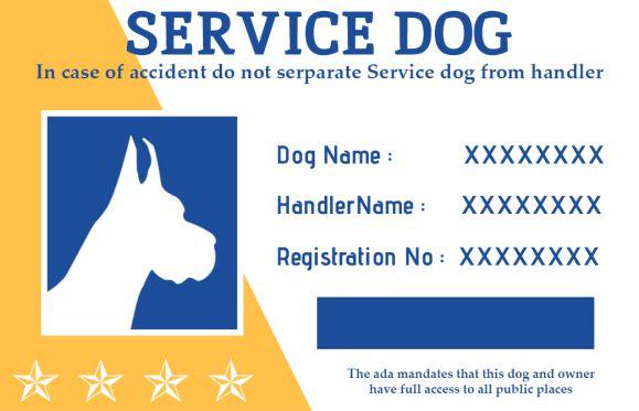 Service Dog Id Cardd