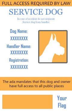 10 service dog badges free creatives with psd source file demplates. Black Bedroom Furniture Sets. Home Design Ideas