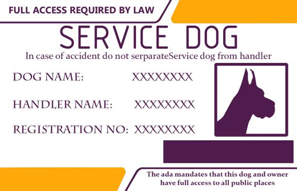 Service Dog Id Cardss