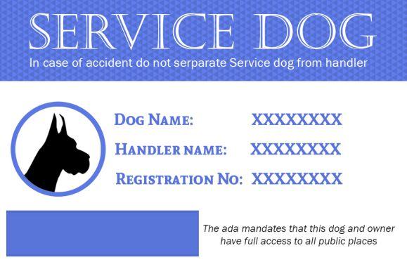 Service Dog Ids Card