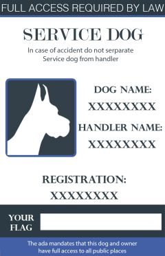 Services Dogs Id Cards