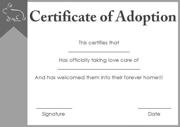Pet Adoption Certificate Template 10 Creative And Fun Customizable
