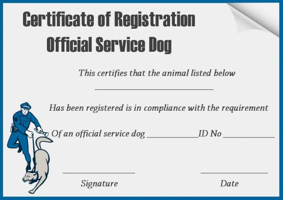 photo relating to Free Printable Service Dog identified as Company Puppy Certification Template : 10+ Term Templates (For
