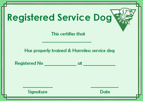 Registered Service Dog Paper