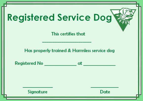 Service Dog Paper Template