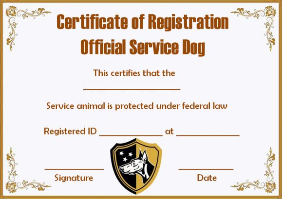 Service dog certificate template 10 word templates for trained assistance dogs of america yelopaper Images