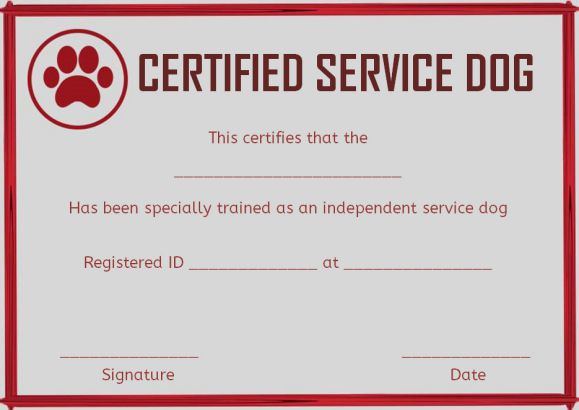 wordings for service dog certificates