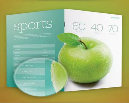 Brochure Template psd2