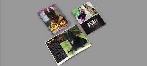 Pets Brochure Template
