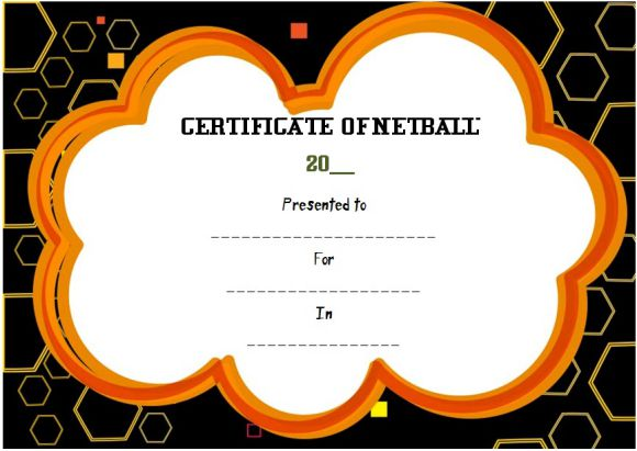 Netball nsw Certificate Of Currency