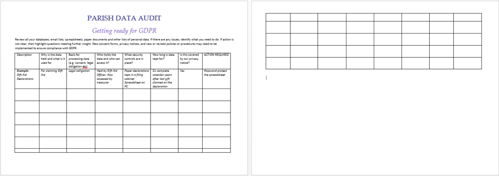 Data Audit Template