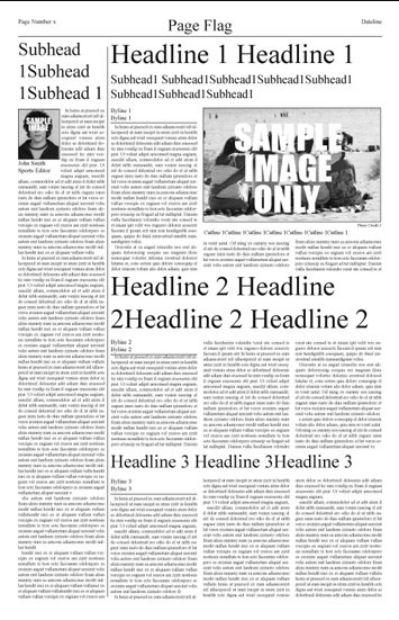IND Pre-designed Newsletter Template