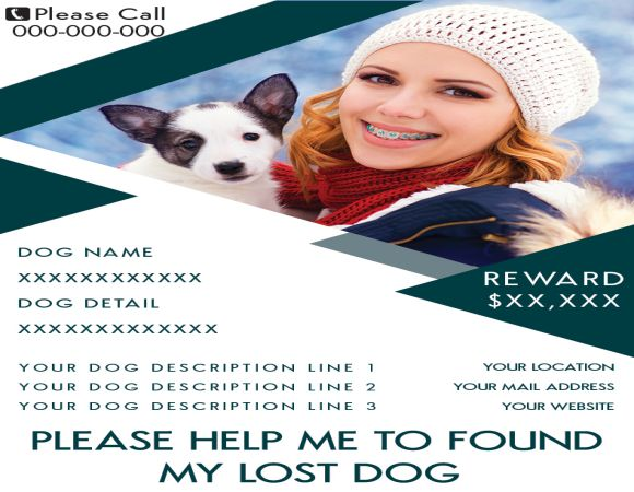 Lost Dog Rewards