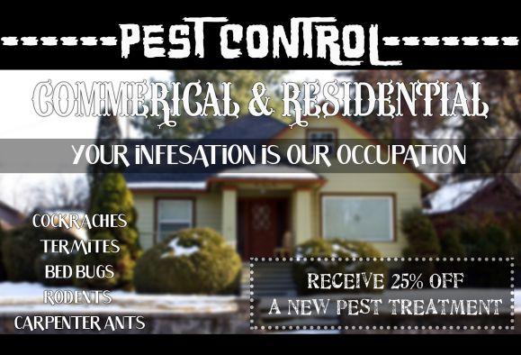 Pest Control Commercial